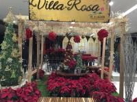Villa-Rosa pic3.jpg