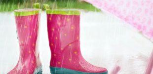 Things to Do During Rainy Season