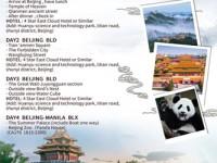Flight Destination Travel and Tours 3.jpg