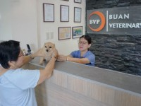 Buan Veterinary Clinic 10.jpg