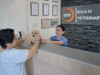 Buan Veterinary Clinic 10.jpg
